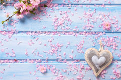 Sakura flowers and  decorative heart on blue wooden planks. Royalty Free Stock Photography
