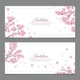 Sakura Flowers Invitation Cards Imagen de archivo