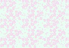 Sakura flowers pattern Stock Image