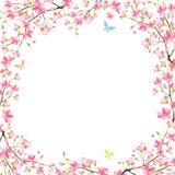 Sakura frame. Beautiful frame with sakura blossom Royalty Free Stock Photography