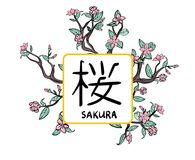 Sakura frame, vector illutration, isolated on white. Sakura frame, vector illutration, isolated on white background Royalty Free Stock Photos