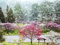 Sakura Garden hermosa en la granja Taiwán de Wuling stock de ilustración