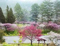 Sakura Garden hermosa en la granja Taiwán de Wuling ilustración del vector