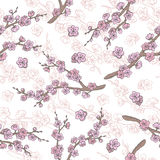 Sakura graphic flower branch color seamless pattern sketch illustration. Vector Royalty Free Stock Image