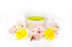 Sakura herbata Zdjęcia Stock
