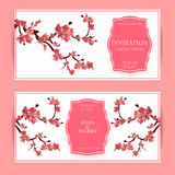 Sakura, illustration de Cherry Blossoming Tree Vector Card Photos libres de droits