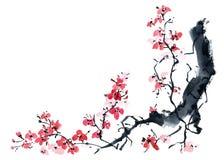 Sakura Illustrazione dell'albero del fiore Immagini Stock Libere da Diritti