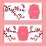 Sakura, illustrazione di Cherry Blossoming Tree Vector Card Fotografie Stock Libere da Diritti
