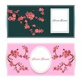 Sakura, illustrazione di Cherry Blossoming Tree Vector Card Insieme di belle insegne floreali, cartoline d'auguri, inviti di nozz Fotografia Stock Libera da Diritti