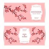 Sakura, illustrazione di Cherry Blossoming Tree Vector Card Insieme di belle insegne floreali, cartoline d'auguri, inviti di nozz Fotografie Stock Libere da Diritti