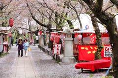 Sakura in Japan Stock Photo
