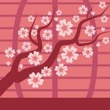 Sakura japan cherry branch vector tree with blooming flowers illustration. Sakura japan cherry flower and pink sakura. Floral. Traditional japan blooming tree vector illustration
