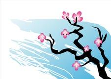 Sakura Japanese style  Stock Image
