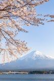 Sakura körsbärsröd blomning och Mt Fuji på Kawaguchiko Royaltyfria Bilder