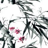 Sakura kwiaty blisko tła strukturę, Obrazy Stock