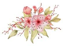 Sakura kwitnie akwareli ilustracj? Okwitni?cie p?atka bukiet ilustracji