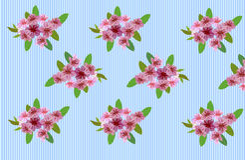 Sakura , landscape Stock Image