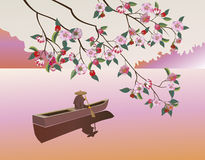 Sakura . A lone boatman, Stock Images
