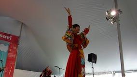 2014 Sakura Matsuri Festival 10 Royalty-vrije Stock Foto's