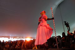 The 2014 Sakura Matsuri Festival Cosplay Fashion Show 12 Stock Image