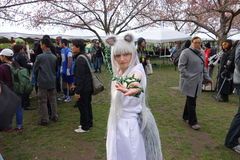 2014 Sakura Matsuri Festival Cosplay Fashion toont 55 Royalty-vrije Stock Fotografie