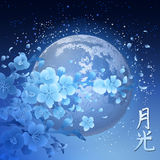 Sakura and moon. Blue sakura branches with moon in the night starry skies on background. Vintage illustration in asian style. Translation of the hieroglyph Royalty Free Stock Photography
