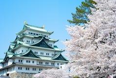 Sakura Nagoya Castle Royaltyfri Foto