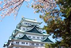 Sakura Nagoya Castle Arkivfoto