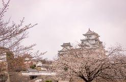 Sakura no castelo de Himeji, Japão Fotografia de Stock