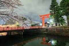 Sakura och torii Arkivfoto
