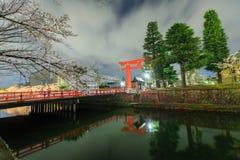 Sakura och torii Fotografering för Bildbyråer