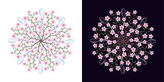 Sakura okwitnięcie, kwitnie czereśniowego drzewa, wektor ilustracji