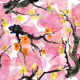 Sakura and orchid flowers. Watercolor painting. Royalty Free Stock Image