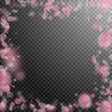 Sakura płatków spada puszek Romantyczna menchia kwiatów rama Latający płatki na przejrzystym kwadratowym backgro Ilustracji