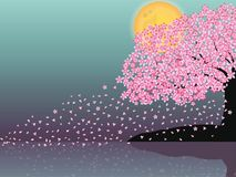 Sakura petals floating in the breeze with the moon . vector illustration
