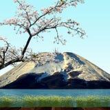 Sakura postcard . menu. Stock Images