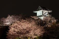 Sakura que floresce no castelo de Kanazawa fotos de stock royalty free