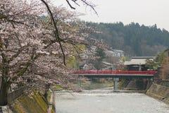 Sakura rosado en el río imagenes de archivo