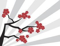 Sakura-Rot auf grauen Streifen Lizenzfreies Stockfoto