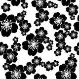 Sakura seamless black and white  background Stock Photos
