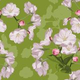 Sakura. Seamless pattern. Pink Cherry blossom branches with leaves. Spring botanical illustration. stock illustration