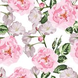 Sakura. Seamless pattern. Pink Cherry blossom branches with pink dog roses. stock illustration