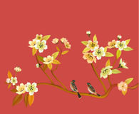 Sakura Sera nella ciliegia di fioritura del giardino Fotografia Stock
