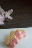 Sakura shortbread. Sakura shaped shortbread with pink chocolate Royalty Free Stock Images
