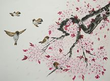 Sakura and sparrows Royalty Free Stock Images