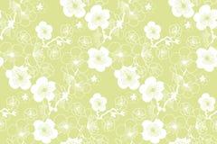 Sakura spring blooming seamless pattern. Royalty Free Stock Photos
