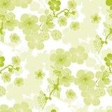 Sakura spring blooming seamless pattern. Royalty Free Stock Photo