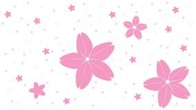 Sakura tło ilustracja - Czereśniowy okwitnięcie Japan - Fotografia Royalty Free