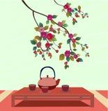 Sakura . Tea ceremony. Royalty Free Stock Images