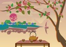 Sakura . Tea ceremony. Stock Photo